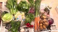 旬のお野菜 - 「アロマの休日 」