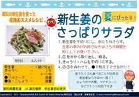 新生姜と胡瓜のさっぱりサラダ - 岡マルカちゃんのベジフル日記