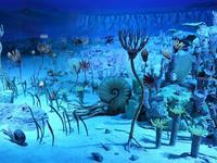 """【フォッサマグナミュージアム】②:そもそもフォッサマグナって?「化石の谷」では約3億年前の化石採集も♪ (Fossa Magna Museum in Itoigawa, Niigata Pref.) - """"Life in 東京"""" 日英バイリンガルブログ"""