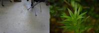 UTC 23:00 May 20, 2017 - kobosssblog