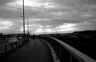 雨上り - そぞろ歩きの記憶