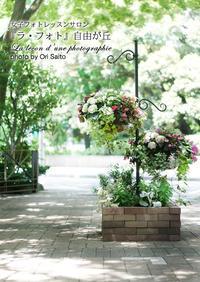 """全ての人の前に、景色は平等に或る…ならば如何に料理しましょうか? 横浜山手西洋館、花と器のハーモニー2017「もてなしの華物語~全7章」から通りすがりのトピアリー。 - 東京女子フォトレッスンサロン『ラ・フォト自由が丘』の""""恋するカメラ"""""""