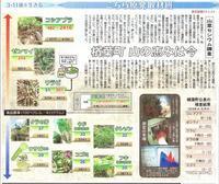 樽葉町山の恵みは今 山菜セシウム調査 /こちら原発取材班 東京新聞 - 瀬戸の風