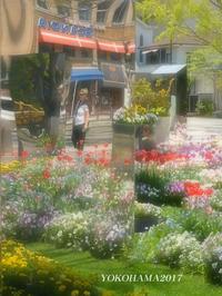 今日までですよ。『横浜』 - 写愛館