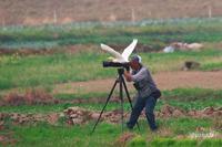 亜麻鷺と野鳥カメラマン - 四季折々に・・・・・