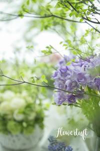 フォト受講生募集のご案内 - 幸せのテーブル*flowertuft-flowers&tablesXphoto