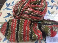 靴下編みにこっています - イギリス ウェールズの自然なくらし