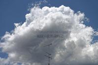 夏空を呼ぶ積雲。 - ~風紋~徒然歳時記