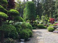 アレヤコレヤ - 三楽 sanraku 造園設計・施工・管理 樹木樹勢診断・治療