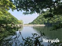 新緑の神戸ハイキング  〜布引ハーブ園から布引貯水池、そして布引の滝へ - 趣味とお出かけの日記