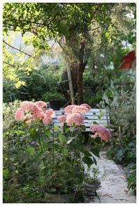 防草対策はどうしてますか? - natu     * 素敵なナチュラルガーデンから~*     福岡でガーデンデザイン、庭造り、外構工事をしてます