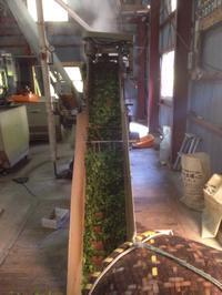 初お茶工場仕事と除草機完成 - にじまる食堂 & にじまる農園