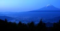 ミツバツツジと富士 - barbersanの野鳥観察