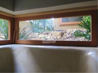 植物的生活808 - Atelier Botanique COCA-Z