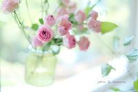 花と器のハーモニー2017  〜山手111番館〜 - Photographie de la couleur