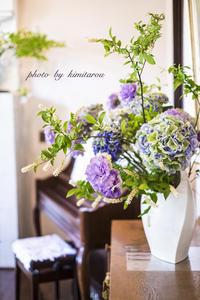 花と器のハーモニー2017  〜エリスマン邸〜 - Photographie de la couleur