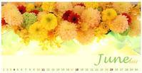 """6月のカレンダー 「星南のぞみお茶飲み会~幕末太陽傳 Dramatic""""S""""編」 - Bloom&Grow通信「芦屋から 季節の色と香りに包まれた贅沢な毎日」"""