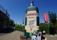 【モーゼルガラス工場&薬草酒ベヘロフカ博物館】カルロヴィヴァリ観光 #チェコへ行こう #visitCzech - ! Buen viaje!(ブエン ビアーへ)旅と猫