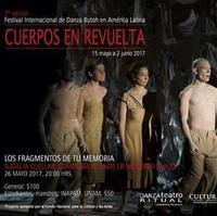 チリのカンパニーの公演本番Espectaculo de Ruta de la Memoria - はちどりの庭  Jardin Colibri