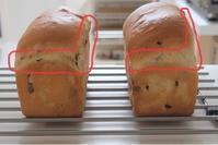 理想の山食の条件。ご自身のパンと比べてみましょう! - 大阪 堺東 パン教室 『大人の女性のためのワンランク上の本格パン作り』 - ル・タン・ピュール -