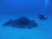 2011.09 奄美 The 3rd day The 1st Dive - ランゲルハンス島の海
