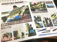 Y.B.F REPORT vol.050 - WaterLettuceのブログ
