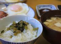 ゴマ油で炒めた野沢菜漬けな朝餉 - ぶん屋の抽斗