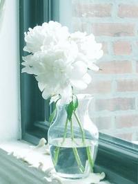 Memorial Day - NYの小さな灯り ~ヘアメイク日記~