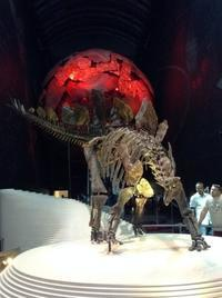 サウス・ケンジントンの自然史博物館へ - 島暮らしのケセラセラ