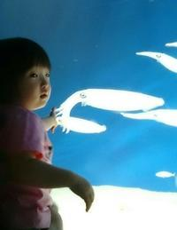 2歳になりました。 - 福岡 白金 イタリア料理  リストランテ木下           木下の夜。