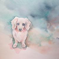 Life work - 犬の絵、描きます < Eyes of a Dog >