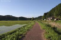 川沿いの道を歩く 2 - 虫籠物語