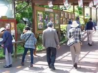 「 同窓の友と伊東、稲取、下田へ ② 2017.6.4 日   」 - 酒中日記