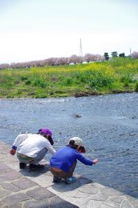 春の土手で - 息子と写真がすき。