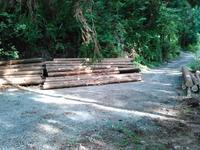 新エリアでの初出荷(支障木) - 自伐型林業 施業日記