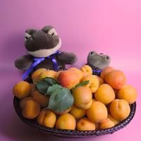 今年も豊作!そしておねーさんの美味しいお誕生会 - 我が家のヌイグルミ・コレクション