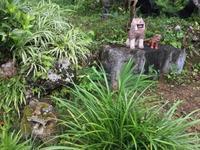 ☆宮古島  やもりとやもりの会話☆ - 神戸でアロマテラピーを。