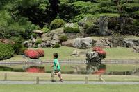 新緑に映える濃いピンクのサツキ(文京区、六義園) - 旅プラスの日記