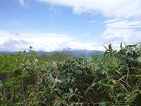 日本二百名山 大日ケ岳 (1,709.0M)   下山 編 - 風の便り