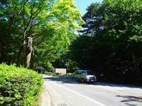 天丸山(カブト山)7-② - 道の森