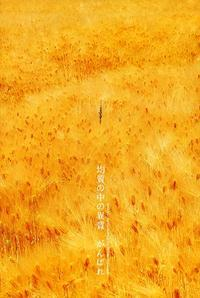 麦 その11 - Illusion on the Borderline  II @へなちょこ魔術師