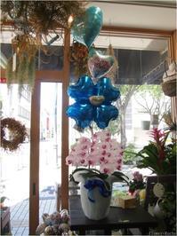 最旬の花贈り☆バルーンと胡蝶蘭の組み合わせが華やかすぎてカワイイ! - ルーシュの花仕事