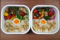 彩り野菜とアスパラ肉巻き弁当 - オヤコベントウ