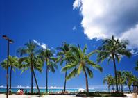 ハワイが延期に…☆ - ∞ しあわせノート ∞