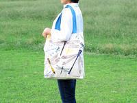 トンボのトートバッグを持ってピクニックに出かけよう! - ブルーベルの森-ブログ-英国カントリーサイドのライフスタイルをつたえる