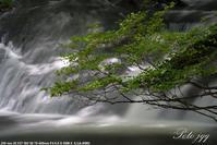 小滝にて ・・・ - ぶらりカメラウォッチ・・