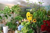 今日はお花の入荷日。 - 花と暮らす店 木花 Mocca