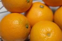 オレンジコンフィー作ります!! - パン・お菓子教室 「こ む ぎ」