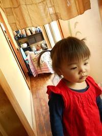 ゆりちゃんのお留守番 - eri-quilt日記2