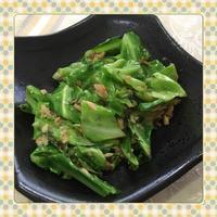 キャベツとツナの簡単ガーリック醤油炒め(レシピ付) - kajuの■今日のお料理・簡単レシピ■